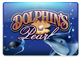 777_dolphins_pearl